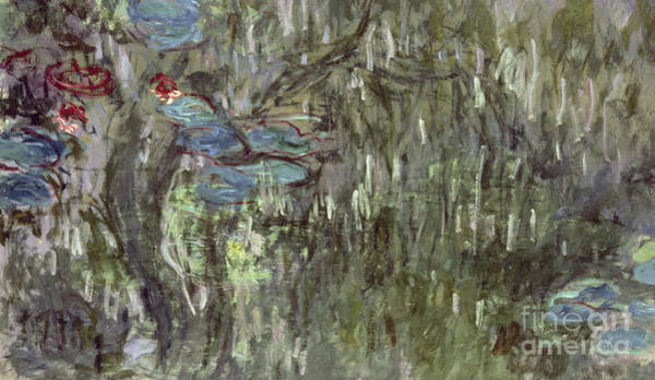 Wall Art - Painting - Waterlilies With Reflections Of Willows by Claude Monet