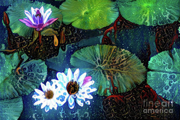 Lilly Pad Digital Art - Waterlillies 15 by Amy Cicconi
