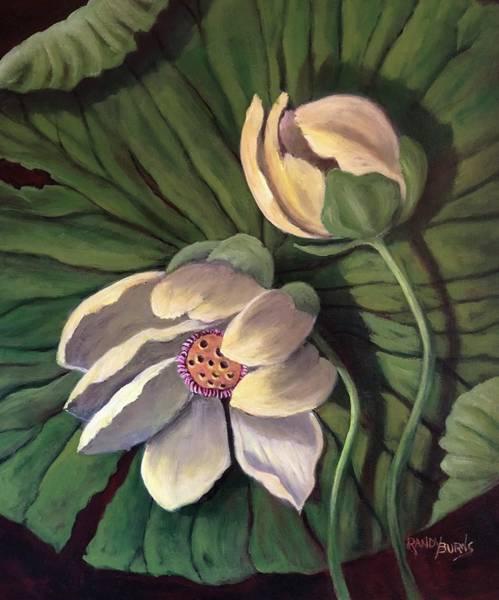 Waterlily Like A Clock Art Print