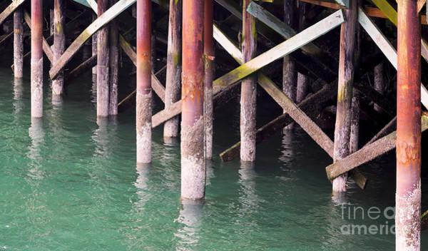 Photograph - Waterline by Jon Burch Photography