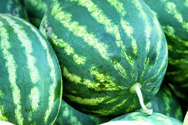 Photograph - Watermelon Yum by Teri Virbickis
