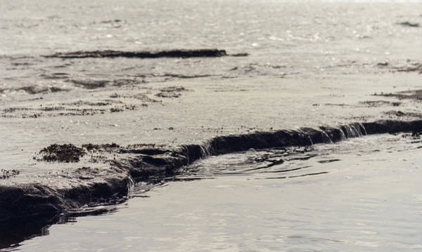 Photograph - Water's Edge by Trance Blackman