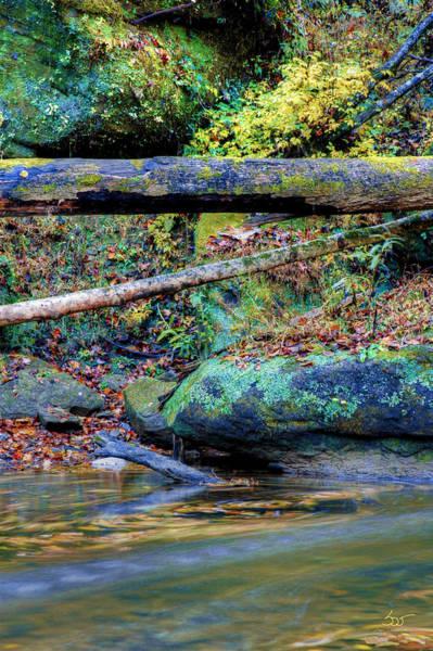 Photograph - Streamswirl 2 by Sam Davis Johnson