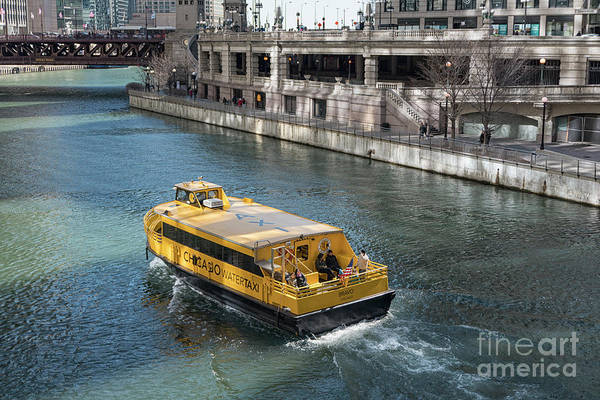 Wall Art - Photograph - Watertaxi On Chicago River by Patricia Hofmeester