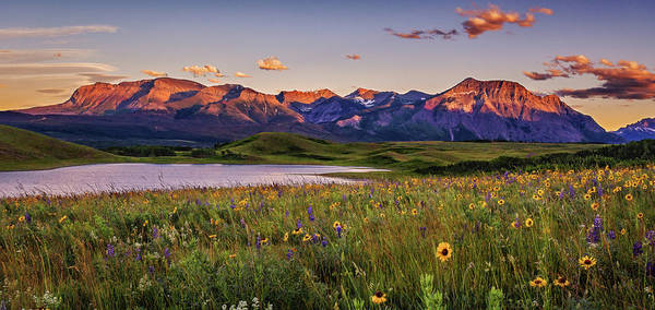 Waterton Lakes Sunset Art Print by Tracy Munson