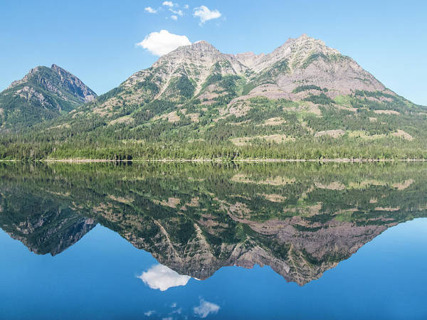 Photograph - Waterton Reflection #3 by Patti Deters