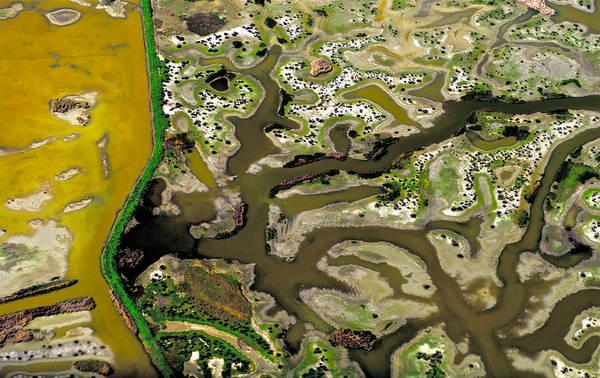 Photograph - Waterworks 13 by Sylvan Adams