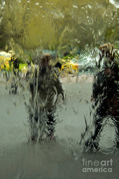 Wall Art - Photograph - Watery Pedesrians by Peter Kneen