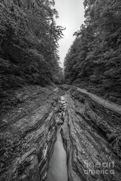 Wall Art - Photograph - Watkins Glen Perspective Bw by Michael Ver Sprill
