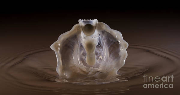 Photograph - Water Drop Photography The Ghost King by Art Whitton