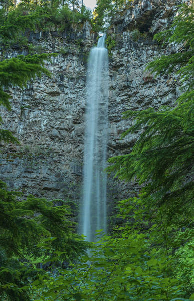 Photograph - Watson Falls by Brenda Jacobs