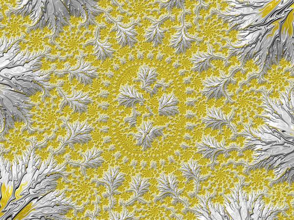 Digital Art - Wattle by Elaine Teague