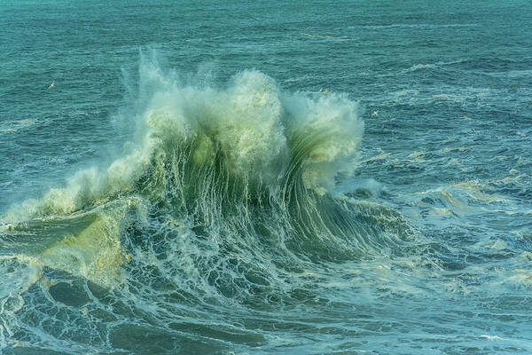Photograph - Wave Crown by Bill Posner