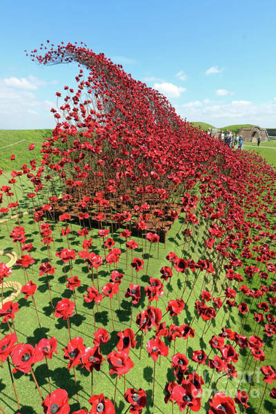 Photograph - Wave Of Poppies At Fort Nelson Uk by Julia Gavin