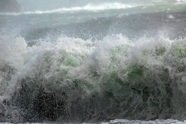 Wall Art - Photograph - Wave On A Mission by Betsy Knapp