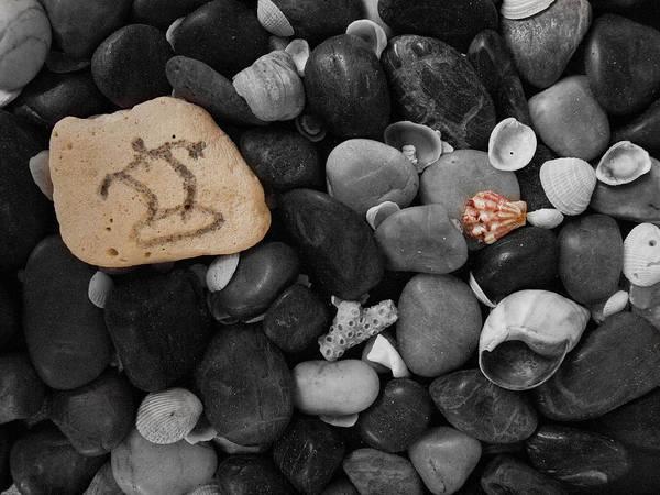 Photograph - Wave Rocks by Randy Sylvia