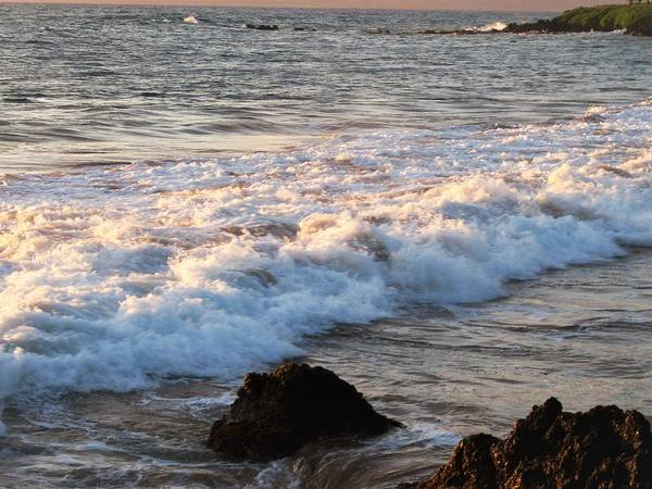 Wall Art - Photograph - Waves  by Charles HALL