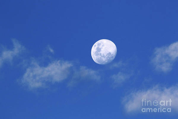 Photograph - Waxing Moon On A Sunny Afternoon by James Brunker