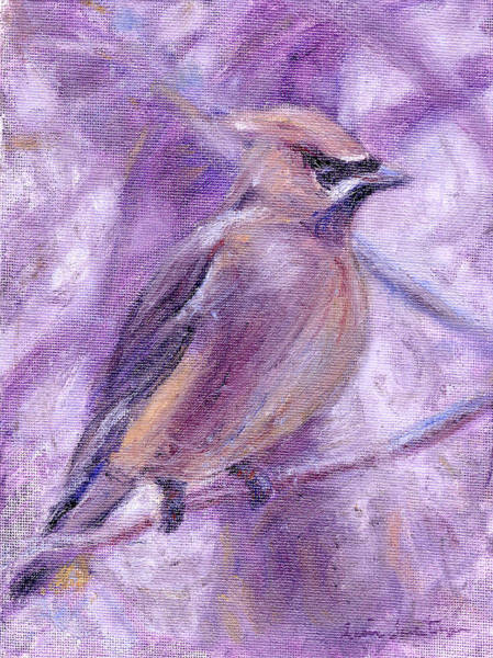 Painting - Waxwing by Quin Sweetman
