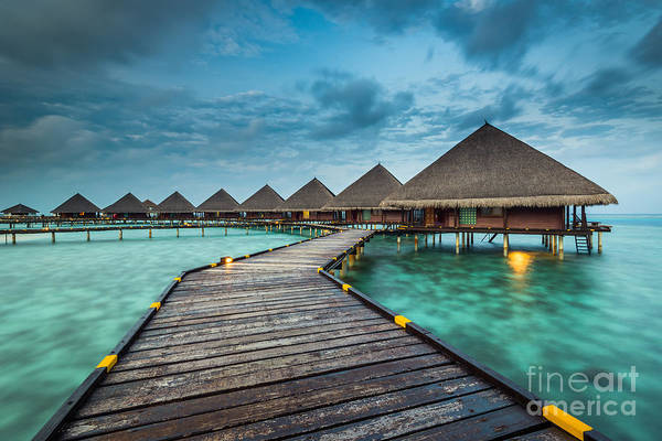 Photograph - Way To Luxury by Hannes Cmarits