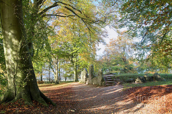 Photograph - Wayland's Smithy In Autumn by Tim Gainey