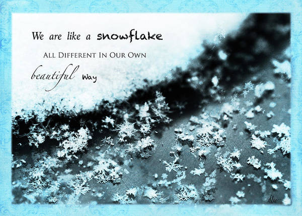 Photograph - We Are A Snowflake by Dianna Lynn Walker