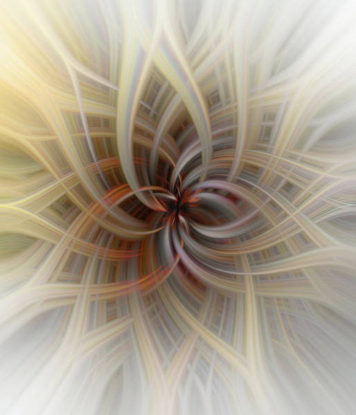 Photograph - We Are All Connected Soft Abstract  by Terry DeLuco