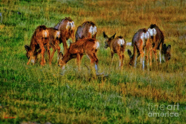 Photograph - We Bow Our Heads With The Loss Of Bambi by Blake Richards