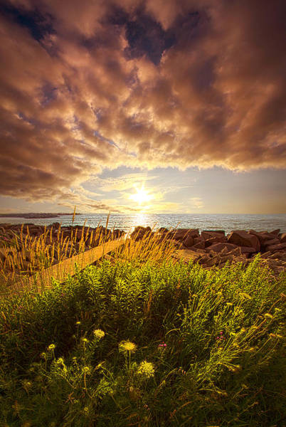Photograph - We Sleep In Our Dreams by Phil Koch