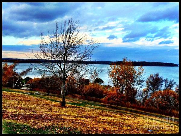 Photograph - Wealth Of The Autumn Season by S Forte Designs