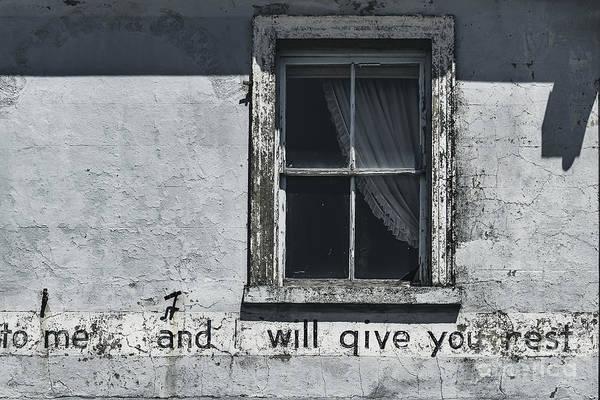 Wall Art - Photograph - Weary by Andrew Paranavitana