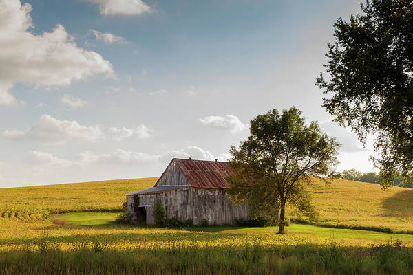 Photograph - Weathered Barn by Mark Mille