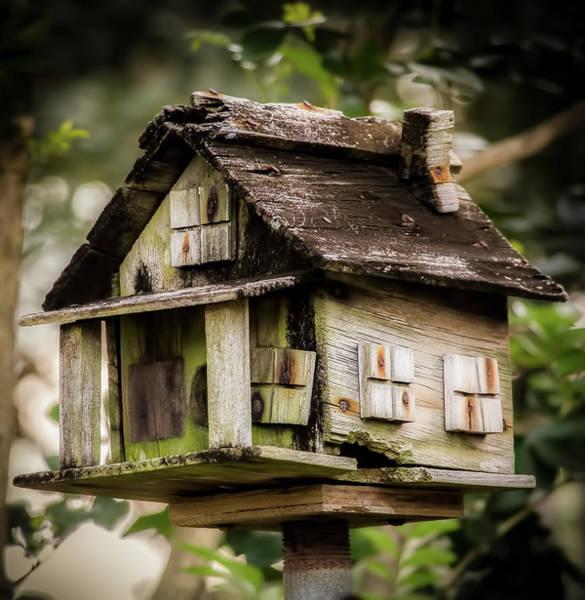 Photograph - Weathered Bird House by Richard Goldman