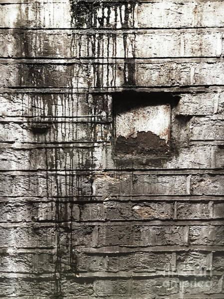 Wall Art - Photograph - Weathered Brick Wall by Tom Gowanlock