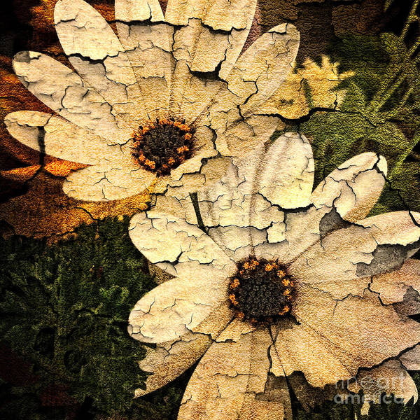 Iphoneography Wall Art - Photograph - Weathered Daisies by Matt Suess