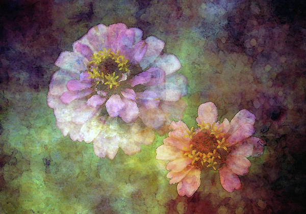 Photograph - Weathered Friends 2227 Idp_2 by Steven Ward