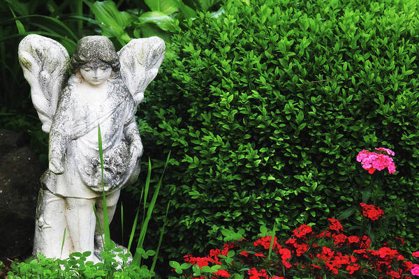 Photograph - Weathered Garden Angel by Trina Ansel
