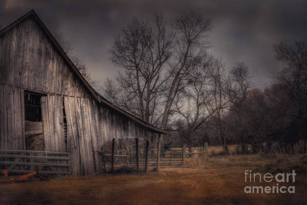 Photograph - Weathered by Larry McMahon
