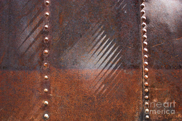 Photograph - Weathered Metal Rivets by Carol Groenen