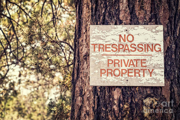 Photograph - Weathered No Trespassing Sign On Tree by Bryan Mullennix