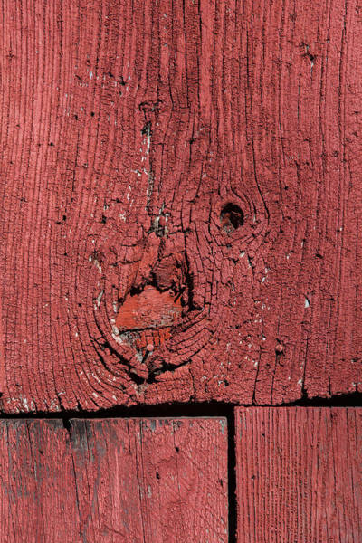Photograph - Weathered Red Barn Wood  by David Letts