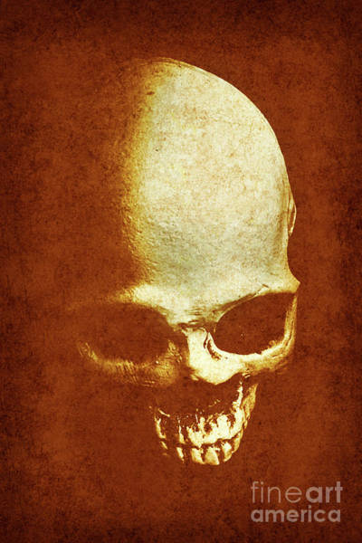 Human Head Photograph - Weathered Remains by Jorgo Photography - Wall Art Gallery