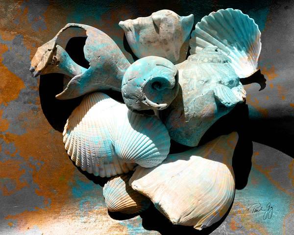 Digital Art - Weathered Shells No. 1 by Paul Gaj