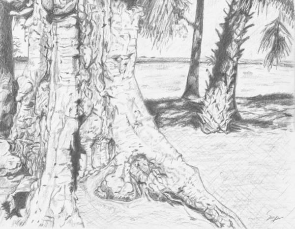 Weathered Trees Art Print