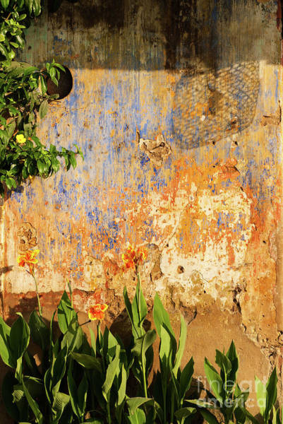 Photograph - Weathered Wall 07 by Rick Piper Photography