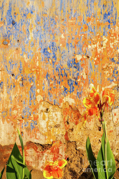 Photograph - Weathered Wall 09 by Rick Piper Photography