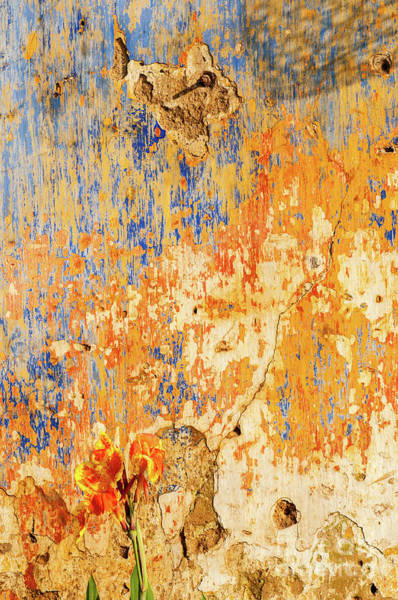 Photograph - Weathered Wall 10 by Rick Piper Photography