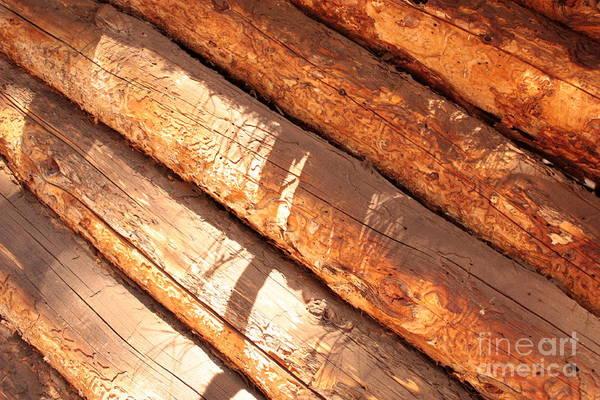 Photograph - Weathered Wood Log Cabin by Carol Groenen