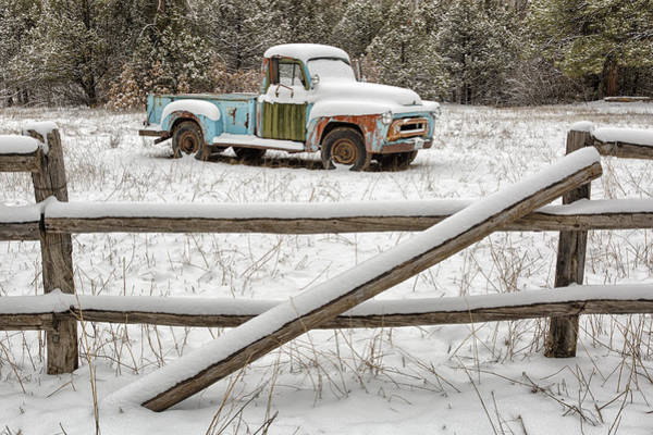 Photograph - Weathering The Storm by Denise Bush