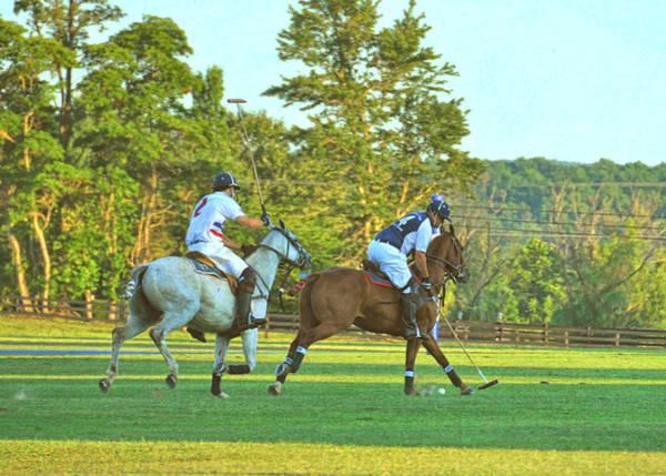 Photograph - Weekend Chukker by JAMART Photography